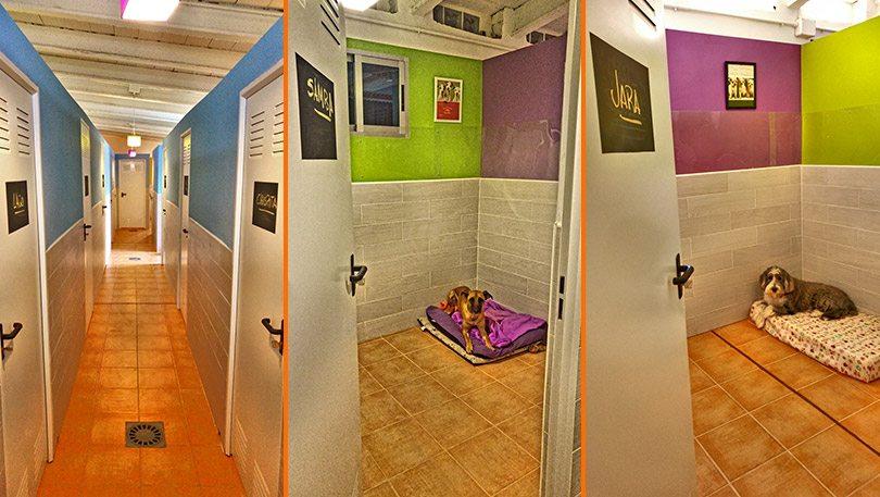 Habitaciones muy espaciosas y cuidadas