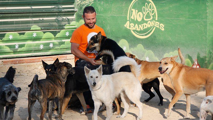 Educador canino en la residencia 24 horas