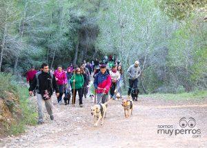 Ruta senderista con los perros en el Valle Perdido Murcia
