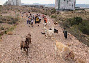 Ruta senderista canina en la Puntica de Lopagán