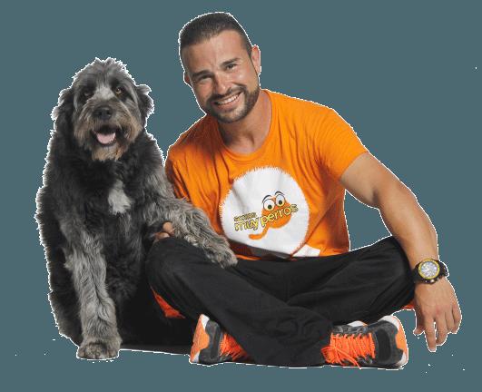 Adiestrador canino en Murcia a domicilio