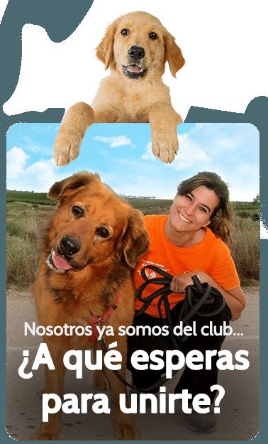 Participa y mantente informado de todas las actividades caninas de nuestro club