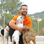 Servicio de educación canina