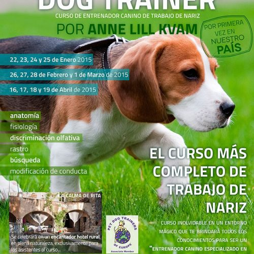 Nosework dog trainer education - Somos Muy Perros