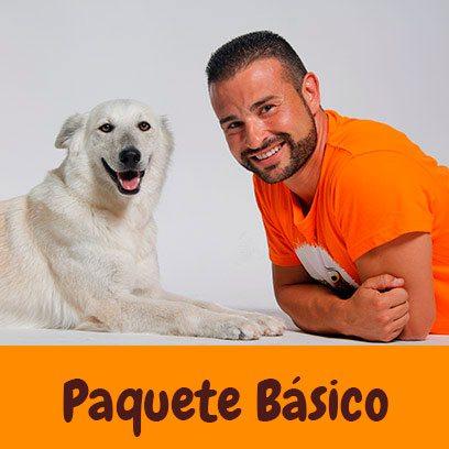 Paquete básico educación canina a domicilio en Murcia