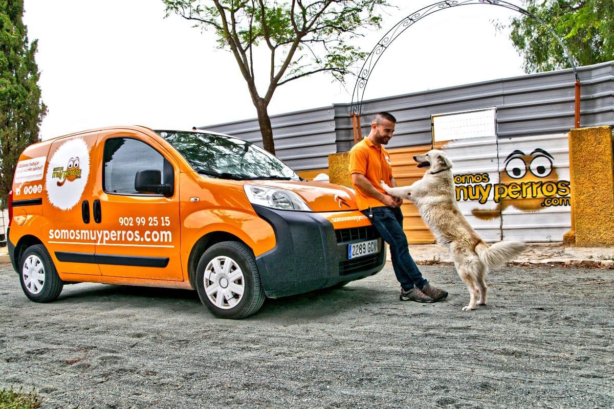 Residencia canina al mejor precio